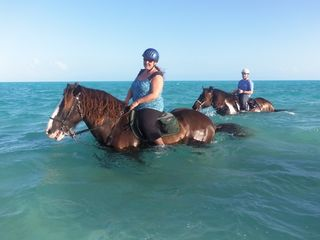 Providenciales - Provo condo photo - Horseback riding