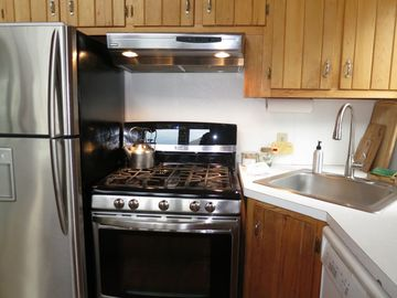 gas stove, stainless fridge , dishwasher... :)