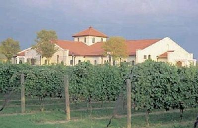 One of the North Fork's Many Wineries