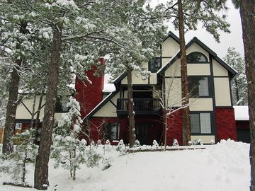 Williams house rental - Our house in the Winter. We are the only house on the block.