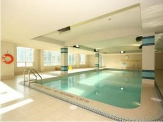 Toronto condo photo - Nice pool - long enough to swim laps...