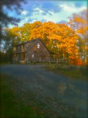Catskill cabin photo - The cabin in Fall.