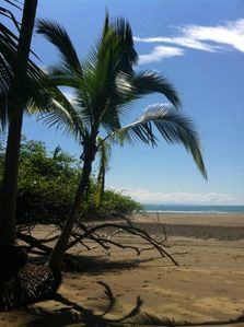Nearby Playa Uvita