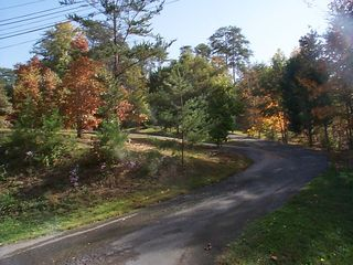 All driveway, cabin is set back - Pigeon Forge cabin vacation rental photo