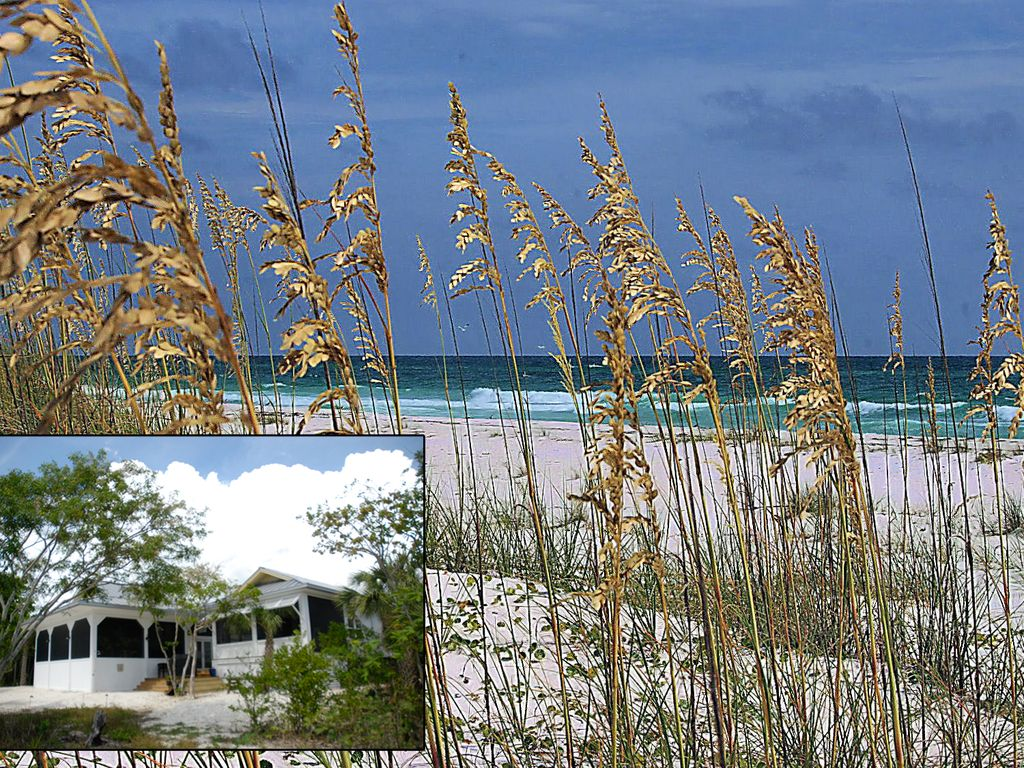 Aislado Sur Beach Vacations Keewaydin Island, Florida - Secluded Beach Vacations Sur -
