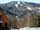 Bretton Woods Townhome Rental Picture