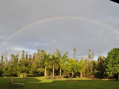 Backyard with palms and rainbow.