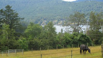 A View Overlooking Brentwood Bay.