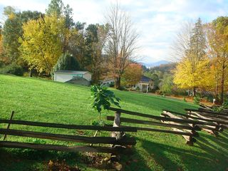 Bakersville cottage photo - Located on private 4 acre plot of land