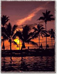 Key West condo photo - Key West sunset at Paradise