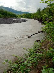Phoenicia estate photo - The Esopus Creek in September.