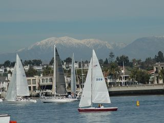 Anaheim cottage photo - Do some sailing, para sailing, whale watching, all in Newport Beach.