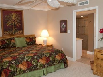 Large Master suite with private bath, large closet, Tropical Fan HD TV & DVD