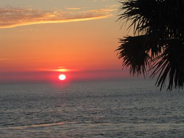 Fripp Island condo rental - Sunrise from the Living Room