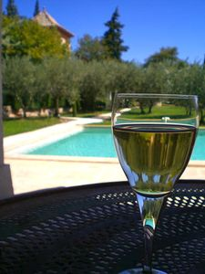 Evening : a glass of Wine in the Pool House near the Pool Tour des Beaumes