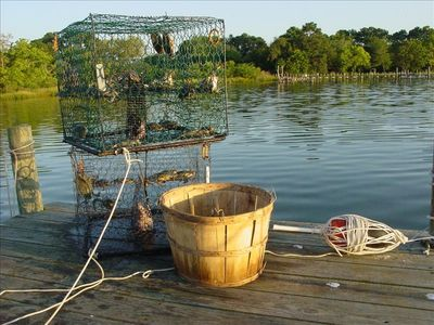 Crabbing on creek from private dock