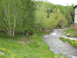 Lead cottage photo - Beautiful Spearfish Creek