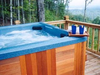 Blue Ridge cabin photo - Hot Tub