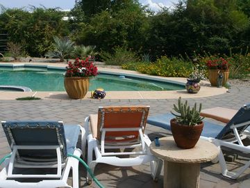 Litchfield Park farmhouse rental - Swimming pool w/ sundeck/lounge chairs