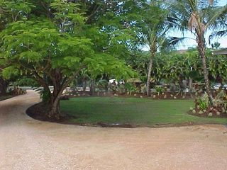 Anini Beach house photo - Driveway
