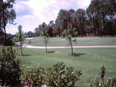 Enjoy the View of the 14th Fairway of the Flamingo Island Golf Course