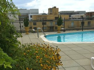 Dupont Circle studio photo - Pool during the summer ONLY
