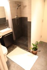 Brooklyn apartment photo - bathroom and shower