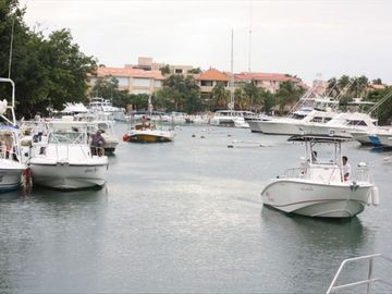 Marina--the best place to get freshly caught fish!