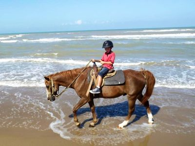 Ride horses on the beach!