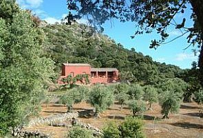 The cortijo over the olive grove- For 6