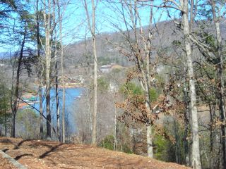 Hiawassee chalet photo - Seasonal Lake Chatuge View from rear deck.