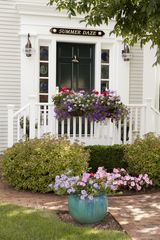 Naushop house photo - Summer Daze, Nantucket