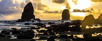Cannon Beach HOUSE Rental Picture