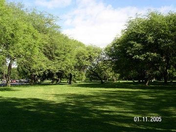 Kapiolani Park for your enjoyment!