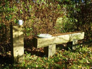 County Sligo house photo - Secret bench in garden