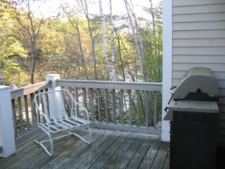 grill - Lincoln house vacation rental photo