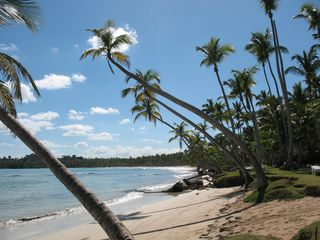 Sosua condo photo - incredible beaches