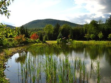 Lake Placid condo rental - Gorgeous Grounds