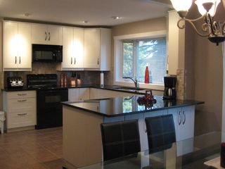 Calgary house photo - Kitchen with New cabinet/appliances, granite top.