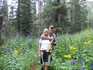 Enjoy a day hiking Wheeler Peak near Taos Ski Valley! - Taos house vacation rental photo