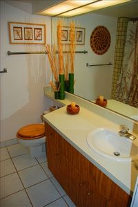 Studio bathroom w/ large whirlpool jet tub