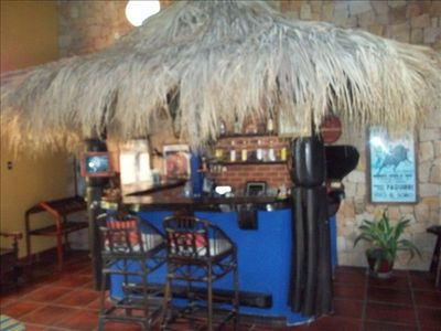 enjoy the jungle bar