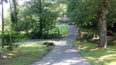 Suches cabin rental - Driveway into Catch A Trout