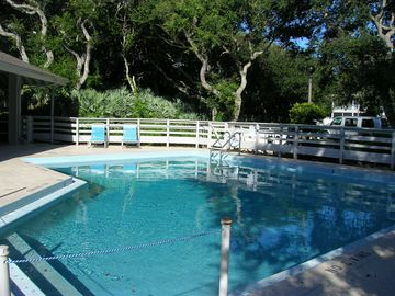 New Smyrna Beach condo rental - One of Sea Woods Three Beautiful Pools!