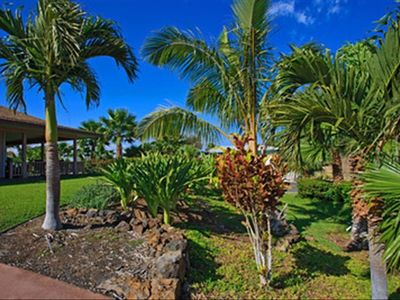 Extensive tropical landscaping!