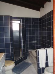 Bonaire house photo - Shower or soak, your choice in the five piece master bath