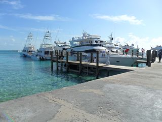 Staniel Cay cottage photo - Some of the visiting yachts