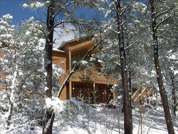 Show Low apartment rental - Pine Oaks Cabin view from the street