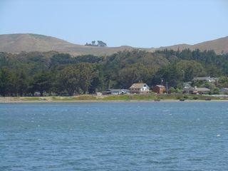 Bodega Bay house photo - Harbor Cutie From Spud Point Marina's Pier