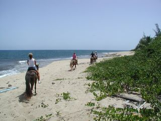 Isabela house photo - Horseback riding on beach